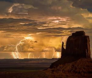 Nature's Divine Show