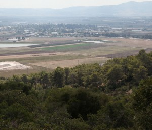 The Land and Story of the Bible: Lower Galilee, Part II - Day of Discovery